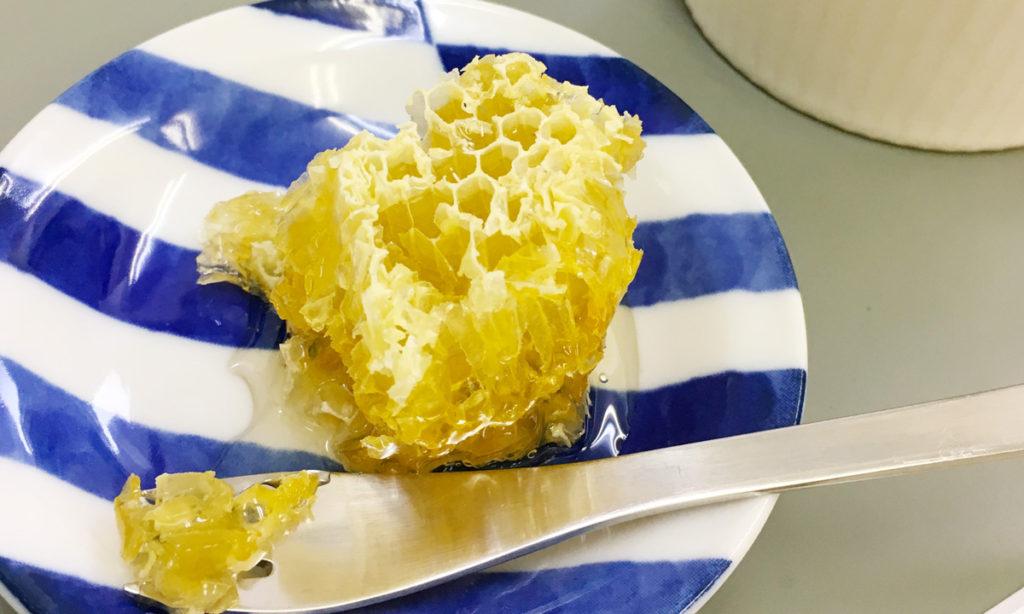 【巣蜜】蜂の巣の味と効能と食べ方【コムハニー】