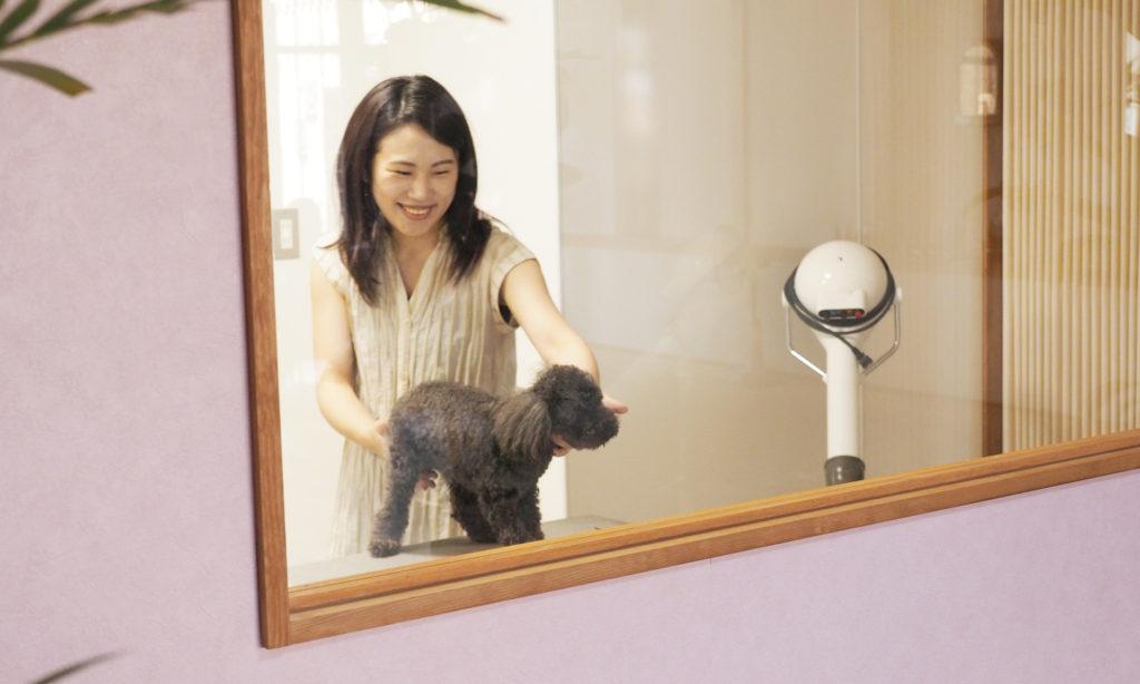 【ワンコ愛】 DOG SALON EAGLE さん 呉に新店舗OPEN!